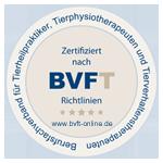 BVFT - Berufsfachverband